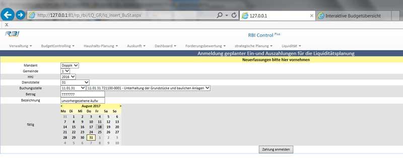 Zahlungsanmeldung mit RBI ControlPLUS